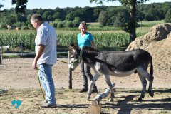 Eselteam-Niederrhein-Team-8